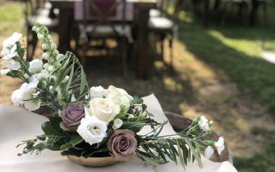 Unique Champaign Backyard Wedding